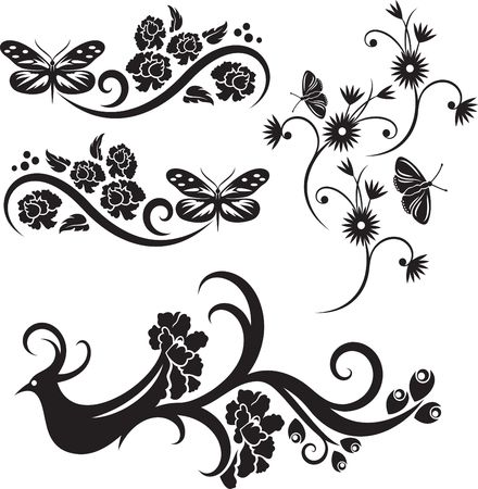 Vector design decorations on white background photo