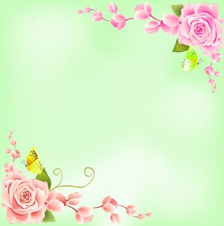 Rose on Green Background photo