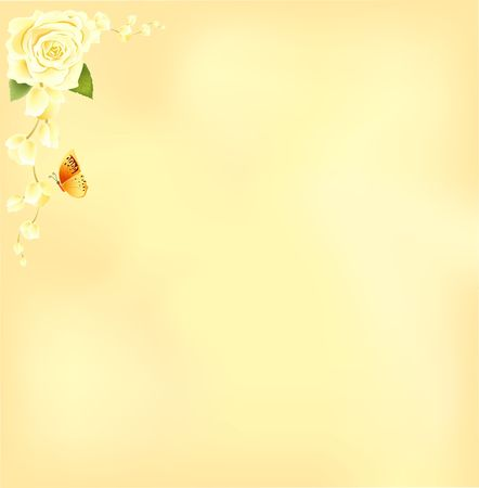 Rose frame background photo