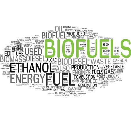 biomasa: Nube de palabras de combustible de BIO Foto de archivo