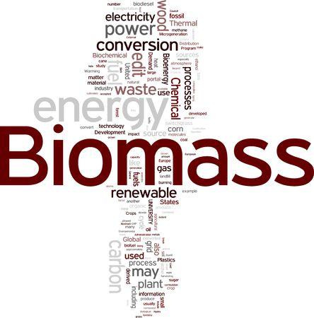 biomasa: Nube de etiquetas de biomasa Foto de archivo