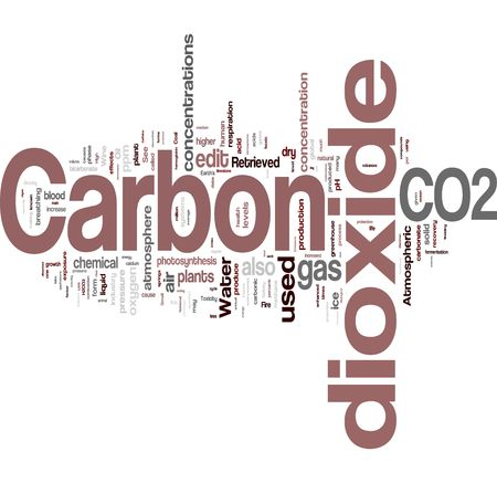 carbonic: Co2 word cloud