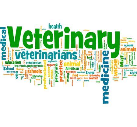 veterinaria: Veterinaria  Foto de archivo