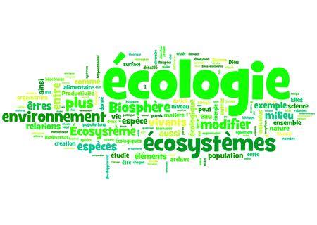 biomasse: �cologie Stock Photo