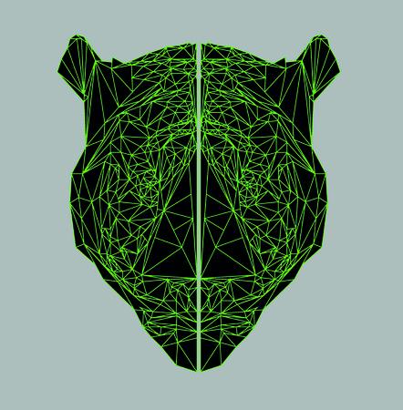 article: tiger poligon