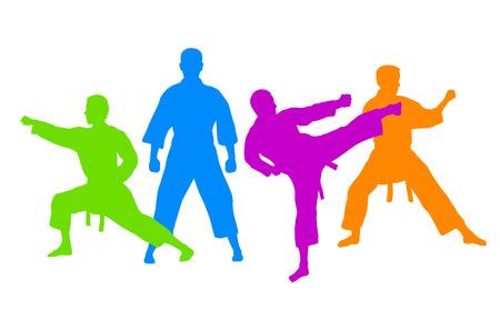 karate fighter: karate fighter