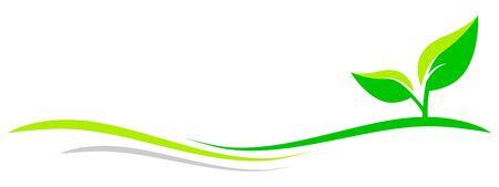 Green leaves vector illustration