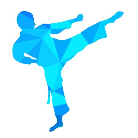 Karate graphic in vector quality