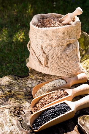 Black chickpeas seeds, quinoa and flax seeds in a wooden spoon. In the background jute bag with seeds. Reklamní fotografie