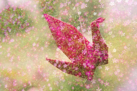 Origami pink paper bird with small flower nature background stock origami pink paper bird with small flower nature background stock photo 71560675 mightylinksfo