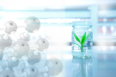 small green plant in bottle glass with chemical molecule in science laboratory background Stok Fotoğraf - 85841388