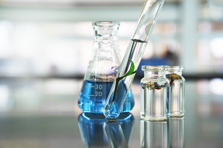 green leave plant in glass test tube and flower in vial with blue liquid solution in flask at natural products biotechnology science laboratory background