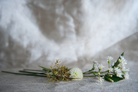 white wild flower and green grass or reed on golden silver fabric luxury background