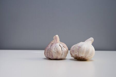 two fresh garlic for food ingredient seasoning on white table and gray background