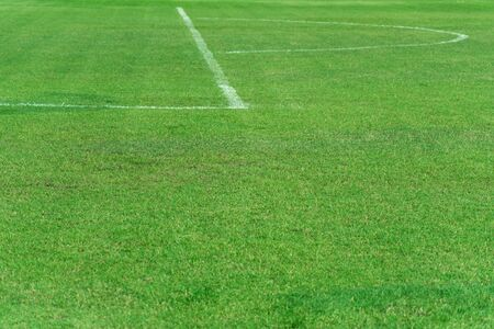 empty green natural grass football or soccer field with white curve and straight line sport background Imagens