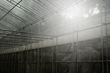 dark interior of metal structure with transparency plastic of green agricultural plantation house background Imagens