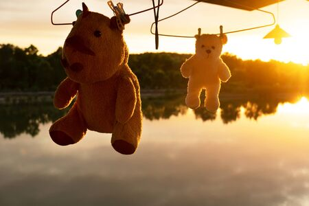 silhouette hanging rhino and bear doll toy in washing process with orange lake sunset natural background