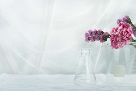 purple pink natural flower with science glass flask beaker in white cosmetic laboratory background Imagens
