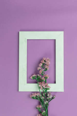 nature small natural pink wild flower in white wood frame on purple background