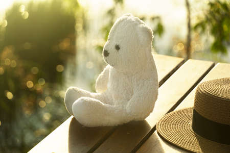 white bear doll sitting on wood terrace with brown summer hat and blur green lake nature at sunlight for travel background