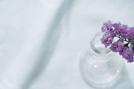 soft purple or violet flower from the top of glass science flask vase for  natural cosmetic research fabric on white fabric background