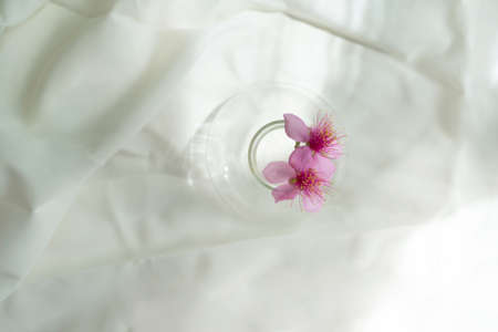 wild pink flower from the top of glass vase on soft white fabric background
