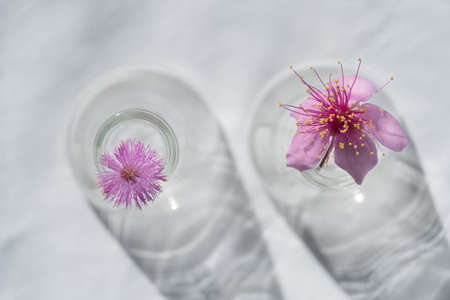 two wild pink flower from the top of glass vase on white fabric background