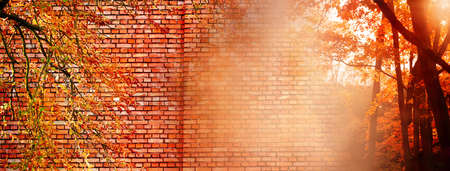 nature orange leave on autumn or fall season tree with brick wall banner background Imagens - 163370601