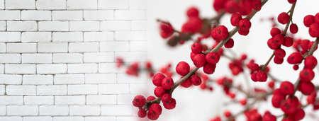 red cherry fruit plant on white brick for  festive banner background Imagens - 164392595