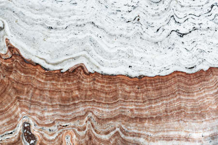 exotic white red brown natural travertine stone texture marble background