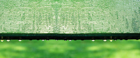 fresh green wood painted with drop of water in green morning garden banner background