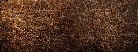 dry tree branch with rough texture of rustic brown red metal wall abstract banner background