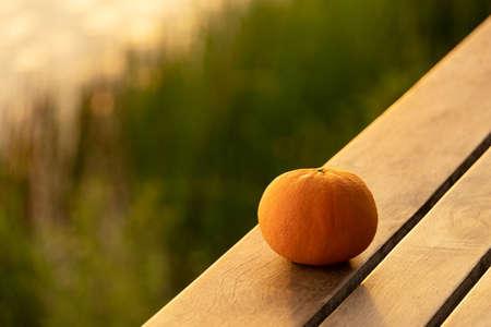 single orange fruit still life on wood floor at natural green meadow water sunset light
