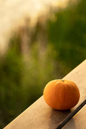 single orange fruit still life on wood floor at soft natural sunset light