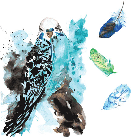Hand-drawn watercolor bird parrot and feathers