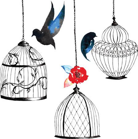 Set Jaulas De Pájaros Pintados A Mano, Pájaros, Hojas, Color Del ...