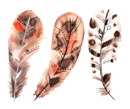 세 수채화 베이지 색 깃털 세트