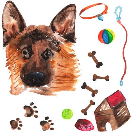 comida alemana: Kit de veterinaria que comprende pastor alemán y accesorios para perros, acuarela, pintado a mano