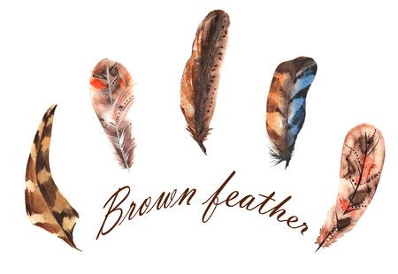 Set van aquarel bruine veren, met de hand geschilderd Stockfoto