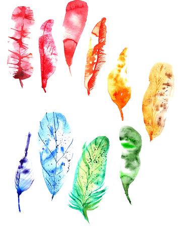 set van kleurrijke aquarel heldere veren