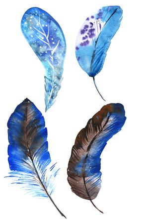 Een set van vier blauwe aquarel veren