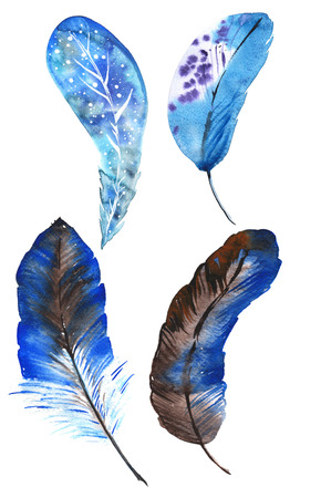 pluma: Un conjunto de cuatro plumas azules acuarela