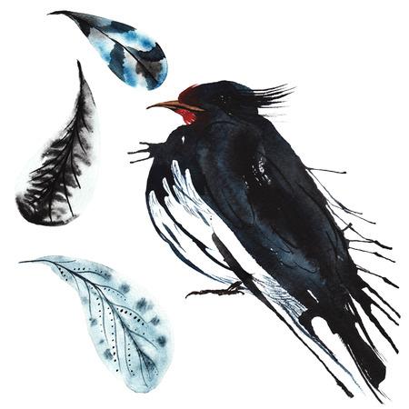 set - aquarel vogel slikken, handgetekende schets van de techniek, en veren Stockfoto