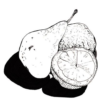 Nog steeds, peer en citroen helften, hand getekende stijl grafische kwaliteit zwart en wit. Overgedragen textuur citroen en kleine hobbels en ruwheid peren, praten over haar stijl en smaak