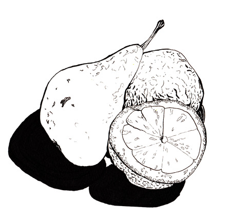 transferred: Still , pear and lemon halves , hand-drawn style graphics quality black and white . Transferred texture lemon and small bumps and roughness pears, talking about her style and taste Stock Photo
