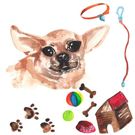 Veterinaire kit bestaande uit Chihuahua en accessoires voor honden, waterverf, met de hand geschilderd