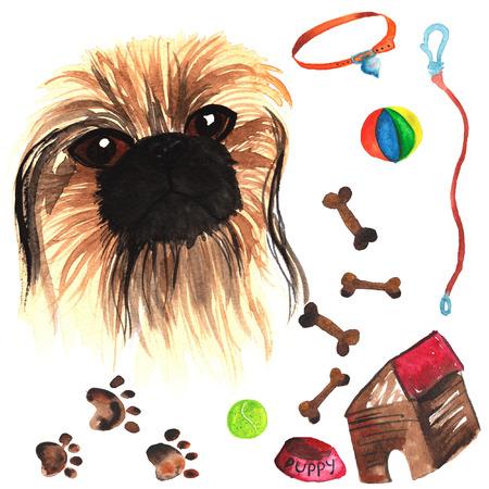Veterinaire kit bestaande uit Pekingese en accessoires voor honden, waterverf, met de hand geschilderd