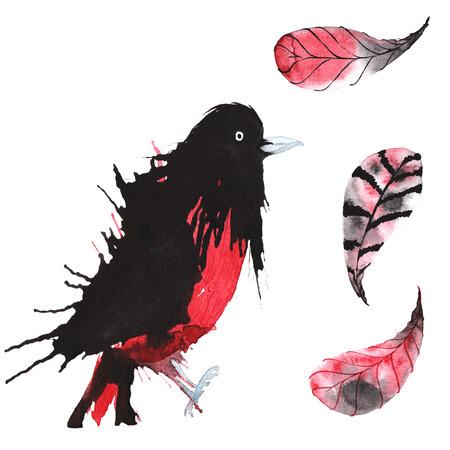 set - waterverf vogel oriole, handgetekende schets van de techniek en veren