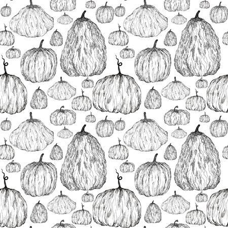 호박, 손으로 그린 라이너의 원활한 패턴 스톡 콘텐츠