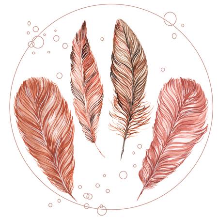 손으로 그린 수채화 흰색 배경에 고립 된 깃털의 집합입니다. 브라운과 그의 그늘. 그것은, 기업의 정체성, 결혼식 초대장, boho 파티의 개발에 사용